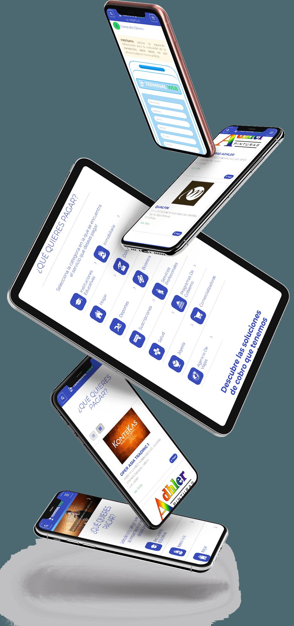 sistemas-de-cobranza-terminal-web